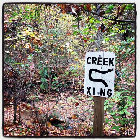 Creek Crossing... Wasn't #expecting that!