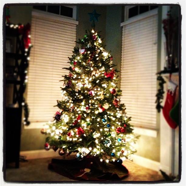 The Maas Tree #christmastree