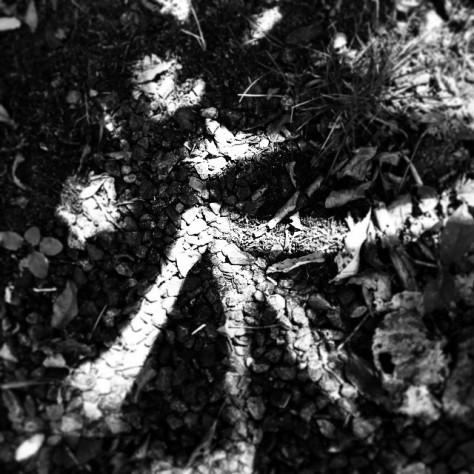 #shadowpainting